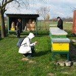 Terenska vaja čebelarsko 4